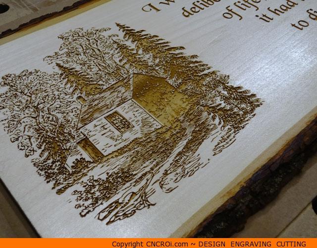 Wooden Live Edge Plaque